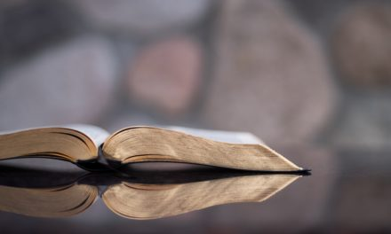 What Should We Do With the Bible? (Discipleship Training)