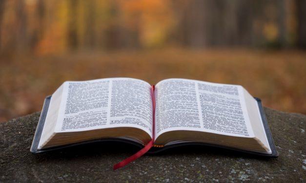 The Ten Commandments – Part 2 (Discipleship Training)