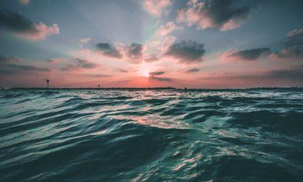 Baptism: Part 2 (Discipleship Training)